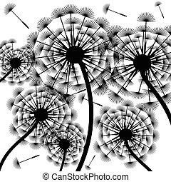 dandelion, silhouette-background