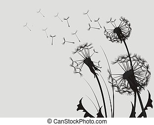 Dandelion Silhouette Black and White Illustration.