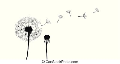 dandelion silhouette with flying seeds isolated on white background
