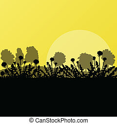 Dandelion spring and summer flower natural meadow landscape illustration background vector