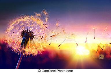 Dandelion To Sunset