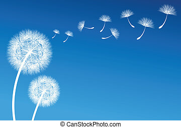 Dandelion - vector dandelion on a wind loses the integrity