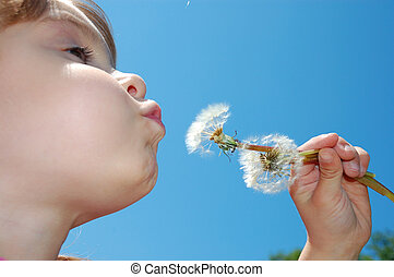 dandelion wishing blowing child