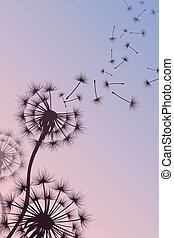 Dandelion with blowing spores vector abstract nature background