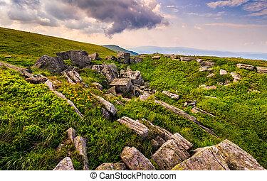Dandelions among the rocks in Carpathian Alps. Heavy cloud...