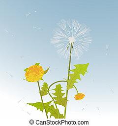 Dandelions decorative card