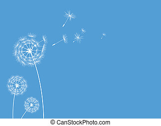 Dandelions greeting card blue - Illustrated dandelions in...