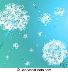 Dandelions in the blue