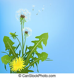 dandelions in wind on light blue background