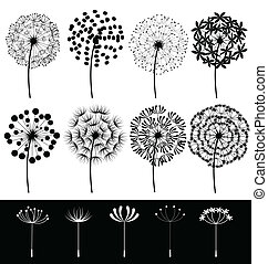 Dandelions set vector - Beautiful dandelions set vector