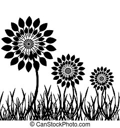 Dandelions silhouette with grass isolated on white background