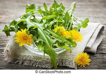 dandelions, verdes, e, flores