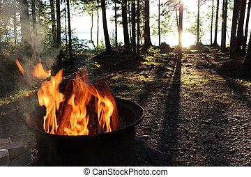 dando boas-vindas, campfire, em, a, madeiras