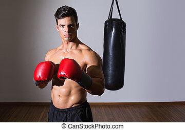 dando pugno, muscolare, shirtless, sacchetto gym, pugile