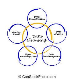 dane, czyszcząc