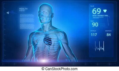 dane, obracający, szkielet, nauka