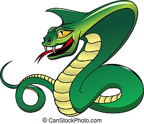Danger green cobra - Green danger snake isolated on white as...
