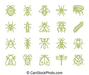 Danger Insect simple color line icons vector set