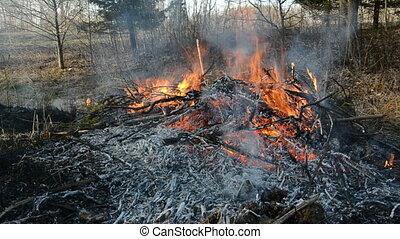 dangerous early spring fire