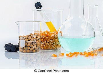 Dangerous food from laboratory agricultural grains and corn...