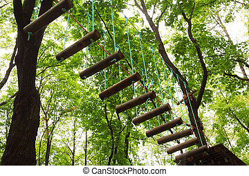 Dangerous ropeway with tether in rope park, trees with green...