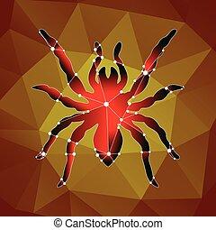 tarantula - Dangerous spider tarantula made in the polygonal...