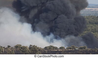 Dangerous wild fire with huge smoke
