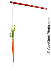 Dangling carrot with white background