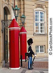 Danish Royal Gard - Royal Gard near Amalienborg castle in...