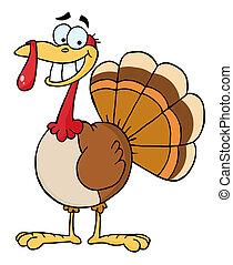 dankzegging, vogel, het glimlachen, turkije