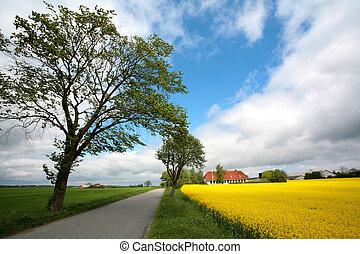 danois, landscape01