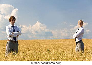 dans, les, champ blé