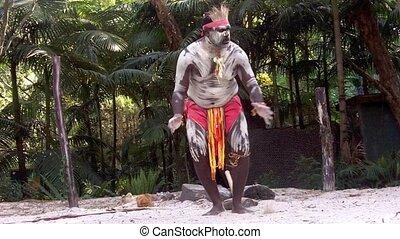 danse, guerrier, aborigène, homme