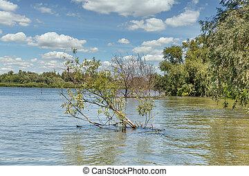 Danube river biosphere reserve summer landscape close to Vilkove, Ukraine.