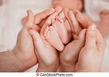 dar, bebé, embarazo, maternidad, preparación, nacimiento, maternidad, concept., pies, expectativa, recién nacido, manos, padres