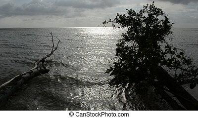 dark and cloudy sea landscape