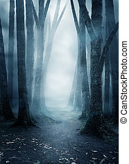 Dark And mysterious Misty Forest