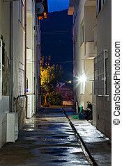 Dark back alley on a wet night