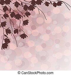 Dark branches of magnolia tree