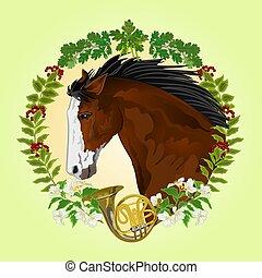 Dark brown Horse head of stallion