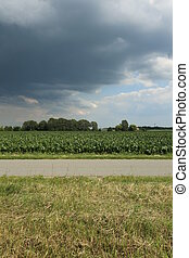 Dark Clouds In Mecklenburg-Vorpommern - Dark clouds on sunny...