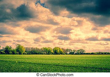 Dark clouds over a field