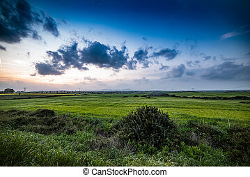 Dark clouds over a green meadow at sunset