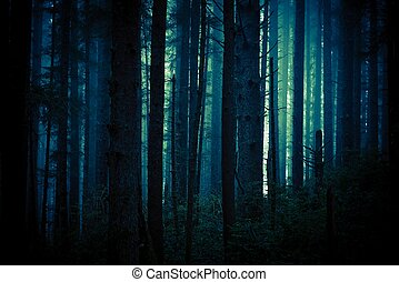 Dark Creepy Forest - Dark, Foggy and Creepy Forest in Dark...