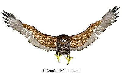 Dark falcon flying - 3D render