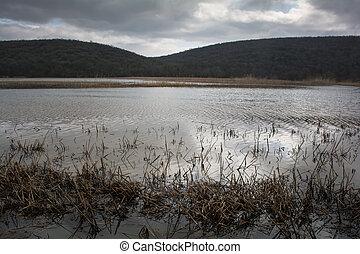 Dark flood lake in the village