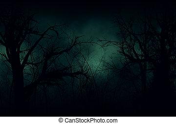 Dark forest - Dark Halloween forest with green fog ...