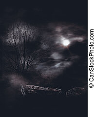 Dark Gloomy Landscape - Mysterious foggy landscape full of...