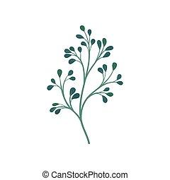 Dark green branchy stem with leaves. Vector illustration on ...