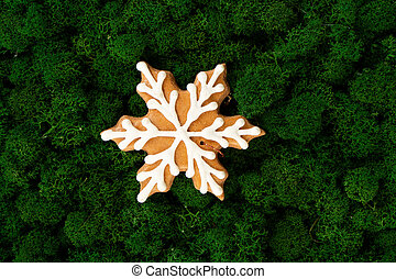 Christmas gingerbread snow flake cookie on dark green moss background